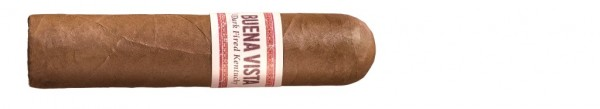 Buena Vista Dark Fried Kentucky Short Robusto